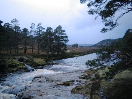 river-dee2-ed.jpg